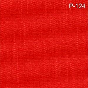 P-124